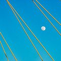 Moon Through The Wires by Dan Leffel