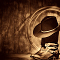 Moonlight Cowboy Boots by American West Legend By Olivier Le Queinec