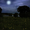 Moonlight Flowers In Cheshire by David Dehner