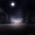Moonlight Journey by Lourry Legarde