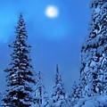 Moonlight  Through The Twilight Haze by Greg Hammond