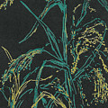 Moonlight Wheat by Vicki  Housel