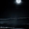 Moonlit Bay by Paul Kloschinsky