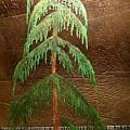 Moonlit Cedar  by Rick Silas