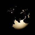 Moonlit Leaves No 2 by Alan Look