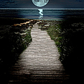 Moonlit Night At The Beach by Ericamaxine Price