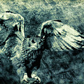 Moonlit Owl by Diane Chandler