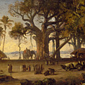 Moonlit Scene Of Indian Figures And Elephants Among Banyan Trees by Johann Zoffany