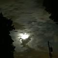 Moonlit Strip by Eric Wait