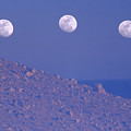Moons And Dunes by Soli Deo Gloria Wilderness And Wildlife Photography
