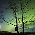Moonset And The Northern Lights, Yukon by Philip Hart