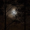 Moonshine 01 by Jouko Lehto