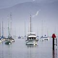 Moored Boats In Morro Bay by Sharon Foelz