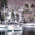Moored Boats In Maine Winter  by Olivier Le Queinec