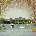 Moored Yachts In A Sheltered Bay by Clive Littin