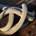 Mooring Rope Made Fast by Linda Shafer