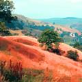 Moorland Hillside  by Elizabetha Fox