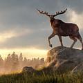Moose At Dawn by Daniel Eskridge