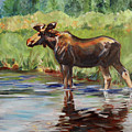 Moose At Henry's Fork by Maria Reichert