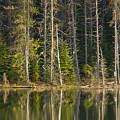 Moose Creek Reservoir by Idaho Scenic Images Linda Lantzy