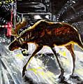 Moose Crossing by Jenn Cunningham