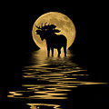 Moose In The Moonlight by Shane Bechler