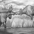 Moose Looking For Love by Russ  Smith