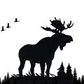 Moose Nature by Anthony Djordjevic