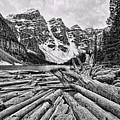 Moraine Lake Driftwood No 1 by Stephen Stookey
