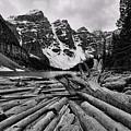 Moraine Lake Driftwood No 2 by Stephen Stookey