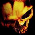 Morbid Decaying Skull by Jorgo Photography - Wall Art Gallery