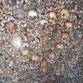 Morbid Heart by Jason Galles