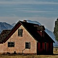 Mormon Row by G Berry