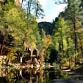 Morning At Oak Creek Arizona by Kurt Van Wagner