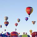 Morning Ballon Rise by Mike Wheeler
