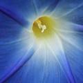 Morning Blue by Jurgen Lorenzen