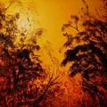 Morning Canopy by Eugene Budden