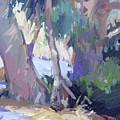 Morning Dance - Catalina Island by Betty Jean Billups