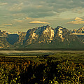 Morning Dawns On The Tetons by Tress Chapin