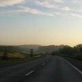 Morning Drive by Rhonda Barrett