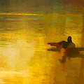 Morning Ducks by Ches Black