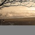 Morning Filey Beach by Svetlana Sewell