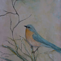 Morning Finch by Christine Howe