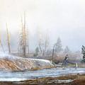 Morning Fog At Black Sand Basin by Carolyn Fox