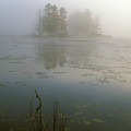 Morning Fog At Harvard Pond by John Burk