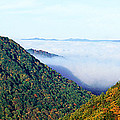 Morning Fog At Sunrise In Autumn by Panoramic Images