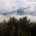 Morning Fog In Autumn In The Verdon by Panoramic Images