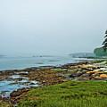 Morning Fog - Maine by Zbigniew Krol