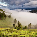 Morning Fog Over Yellowstone by Neal Herbert
