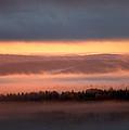 Morning Glory  by Doug Gibbons